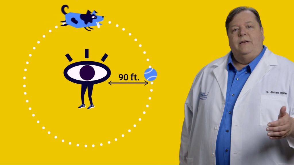 Ask a Scientist: All Eyes on Animals (Explainer Video)